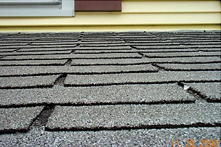 MAIN ROOF SHINGLE
